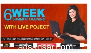 6 weeks summer training in noida delhi