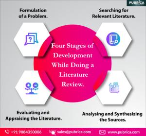 Literature review public service