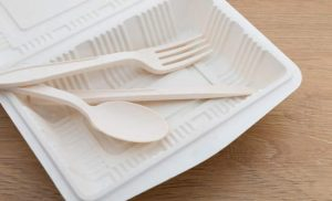 biodegradable tableware market poised to expand at a robust pace by 2025