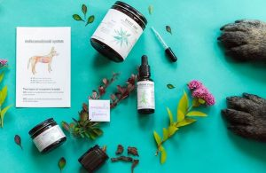 cbd products-Blooming culture