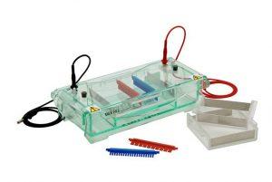 Gel Electrophoresis Apparatus Market