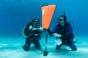 Underwater Air Lift Bags Market