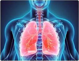 Chronic Bronchitis Treatment Market