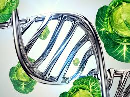 DNA Testing for Personalized Nutrition Market