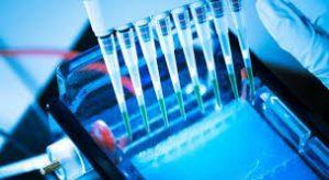 Drugs of Bioengineered Protein Market