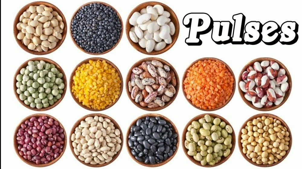 Pulses export from india