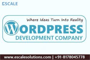 WordPress Development Company in Delhi