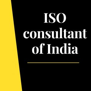 Business consultant of India