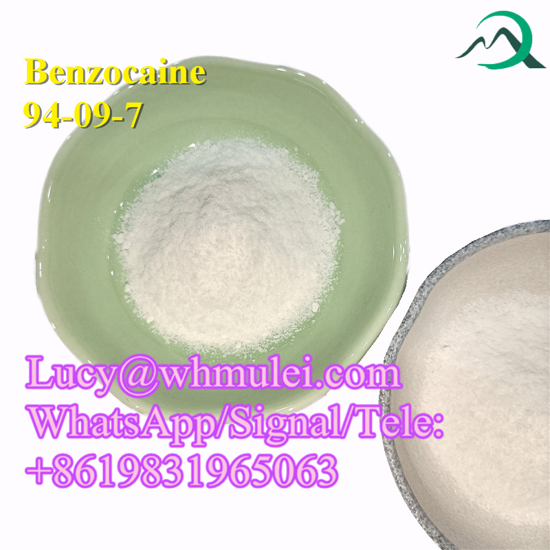 Benzocaine Powder CAS 94-09-7 Anesthetic Agents China Benzocaine Supplier