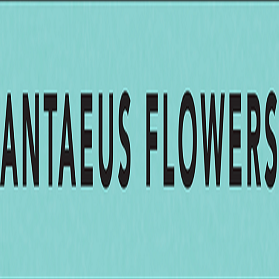 Antaeusflowers